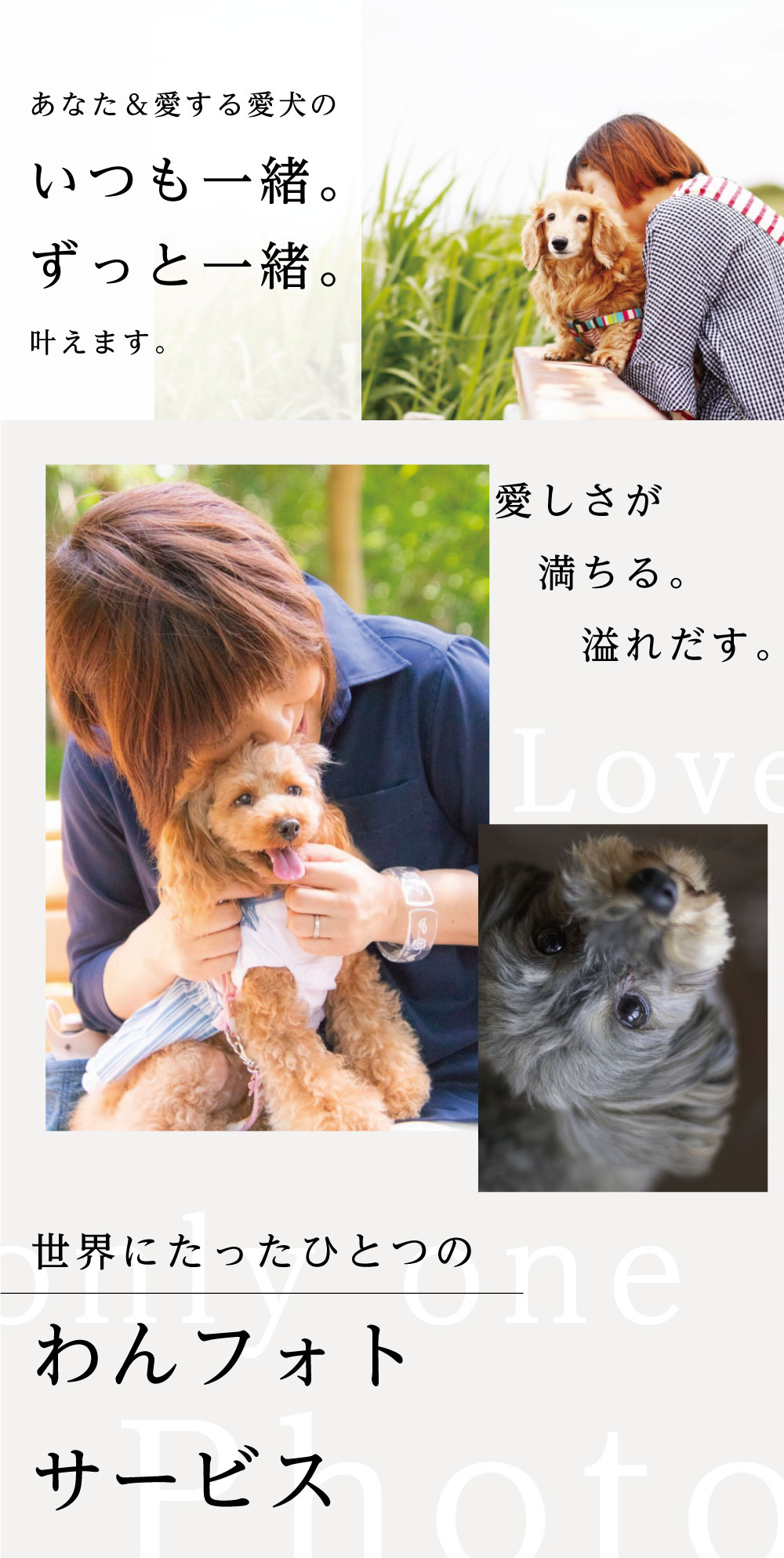 あなた&愛犬のいつも一緒。ずっと一緒。を叶えます。愛しさが満ちる。溢れ出す。世界にたったひとつのわんフォトサービス