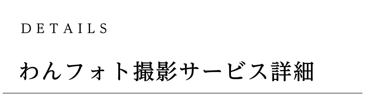 わんフォト撮影サービス詳細