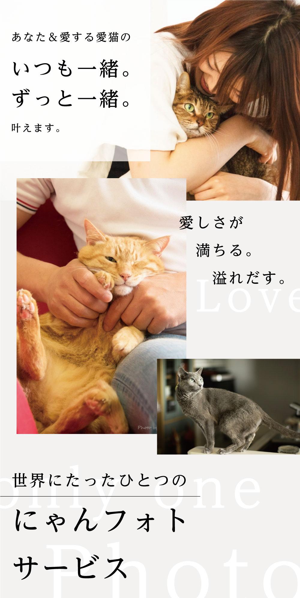 あなた&愛猫のいつも一緒。ずっと一緒。を叶えます。愛しさが満ちる。溢れ出す。世界にたったひとつのにゃんフォトサービス