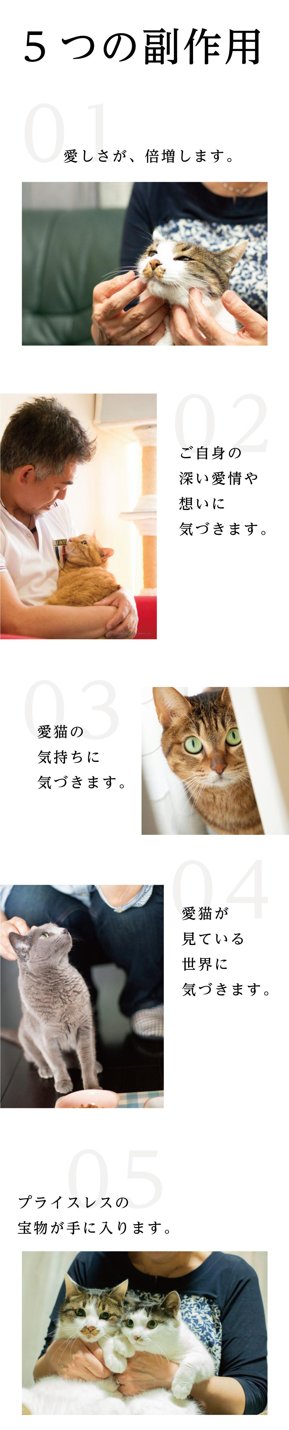 5つの副作用 01:愛しさが、倍増します 02:ご自身の深い愛情や想いに気づきます 03:愛猫の気持ちに気づきます 04:愛猫が見ている世界に気づきます 05:プライスレスの宝物が手に入ります