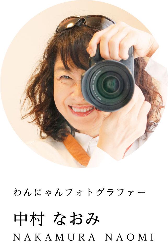 わんにゃんフォトグラファー 中村なおみ NAKAMURA NAOMI