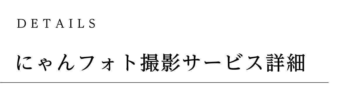 にゃんフォト撮影サービス詳細