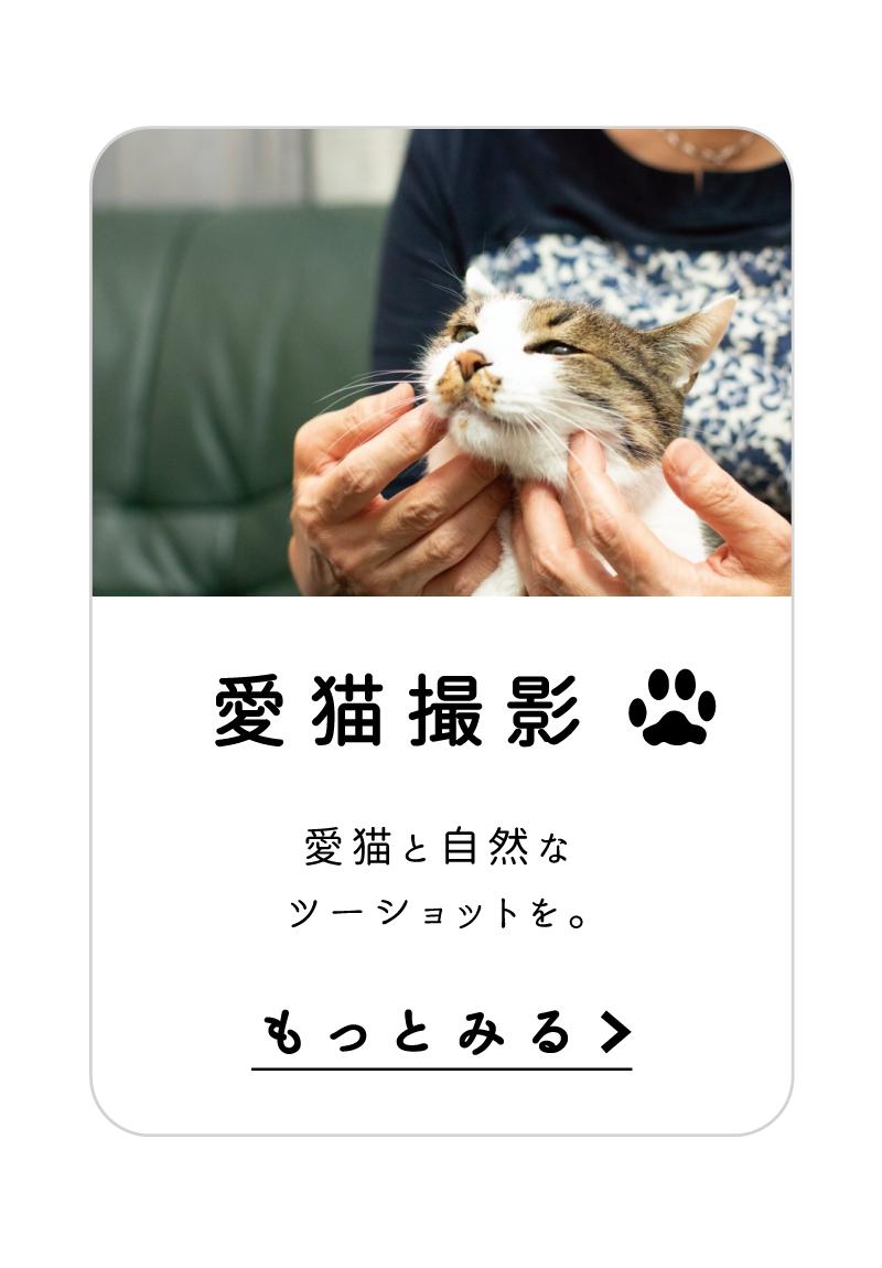 愛猫撮影 愛猫と自然なツーショットを